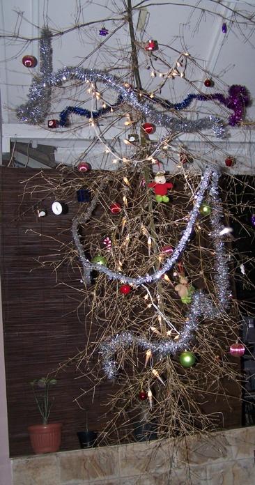 Pohon Natal Terbalik Dari Ranting Pohon Bambu